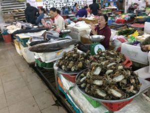 生鮮コーナー魚